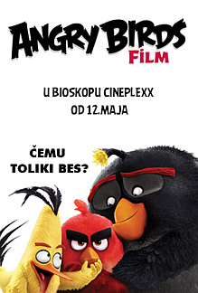 Angry Birds Film 3D SINH