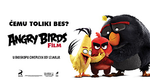 Angry Birds Film (sinh)